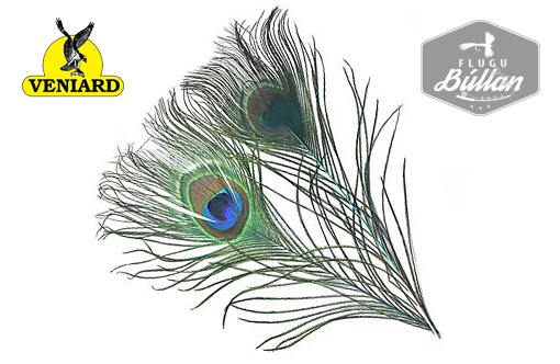 Veniard Peacock Eye Top - Flugubúllan